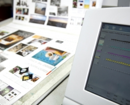 Offset or Digital Printing? The Choice Is Yours