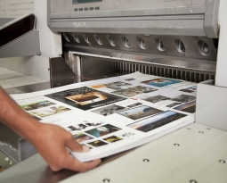 Offset Printing Design: The Importance of White Space