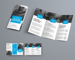 5 Brochure Design Tips